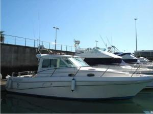 tumarine-faeton-moraga-930-32239070110570574954515053504566x
